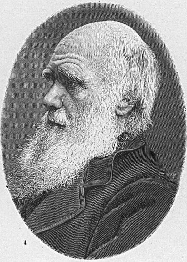 Darwins verdensomsejling