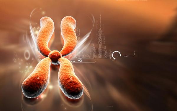 Gener, kromosomer og DNA - undervisningsmateriale til biologi