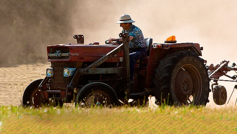 Landbrug
